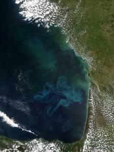 Remolinos de color azul-verdoso indicando la presencia de grandes cantidades de fitoplancton en el Golfo de Bizkaia. Credit: NASA