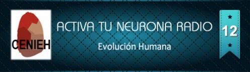 Activa Tu Neurona Radio ® Nº12 Evolución humana. CENIEH