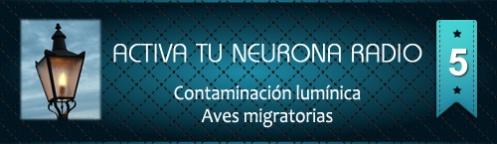 Activa Tu Neurona Radio ® Nº5 Contaminación lumínica y Aves migratorias