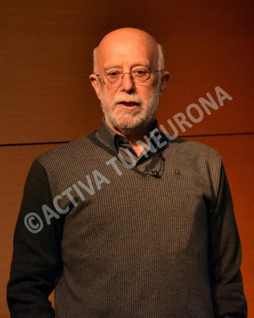 Martín Rivas recibe los aplausos de la multitud. Foto: © Javier San Martín