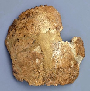 Parietal de Homo sapiens neanderthalensis. Cova Negra, Xàtiva. Foto: http://www.museuprehistoriavalencia.es