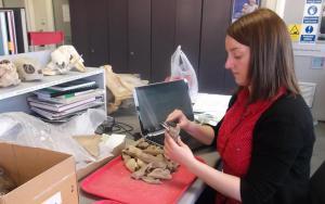 La investigadora Idoia Grau en su laboratorio. Foto: UPV/EHU