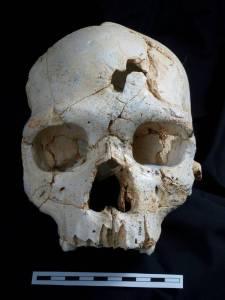 El cráneo 17. Foto: Javier Trueba.